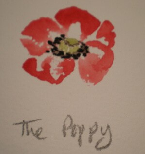 Paint a pretty poppy just for fun