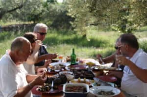 Lunch under the Olive trees.